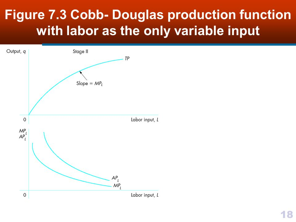 Figure 7.3 Cobb- Douglas production function with labor as the only variable input