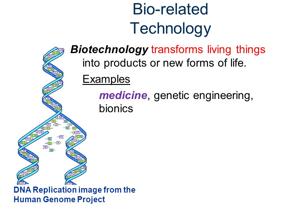 Bio-related Technology