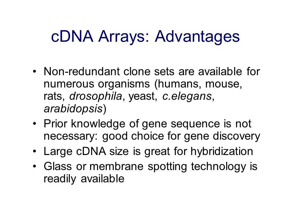 cDNA Arrays: Advantages
