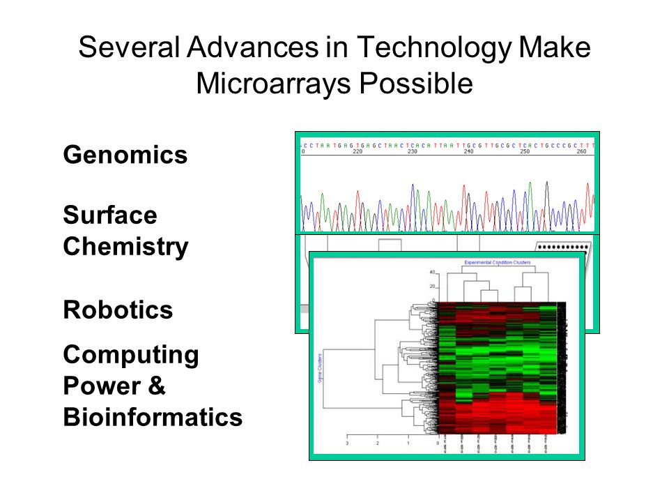 Several Advances in Technology Make Microarrays Possible