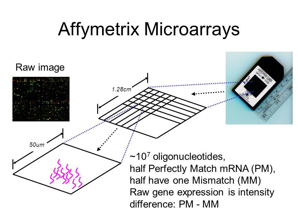 Affymetrix Microarrays