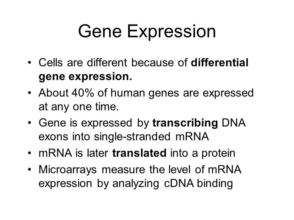 Gene Expression Cells are different because of differential gene expression. About 40% of human genes are expressed at any one time.