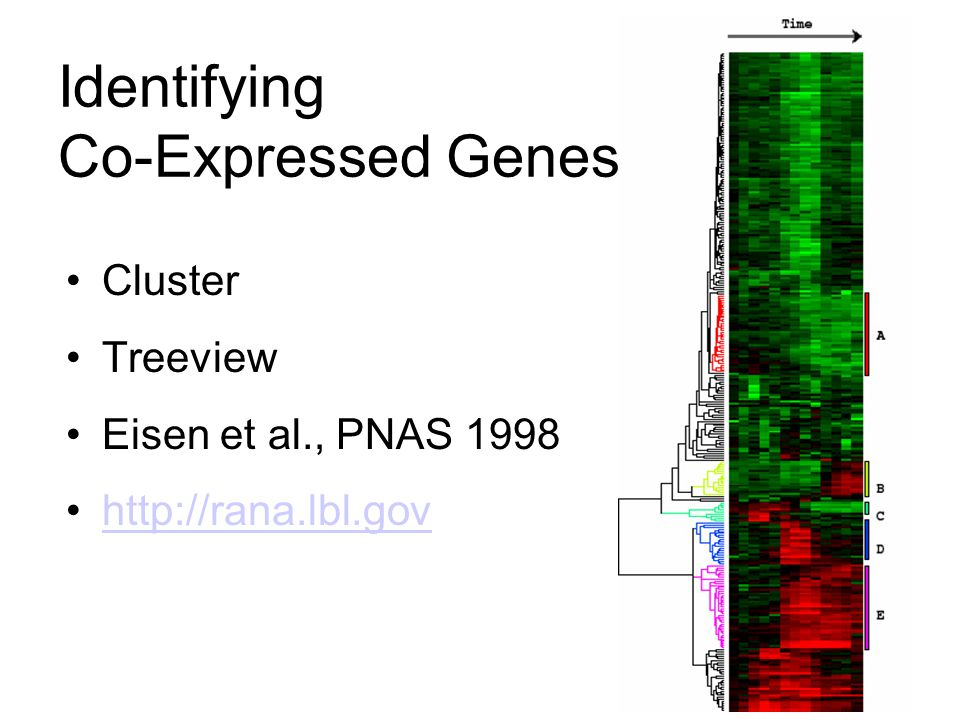 Identifying Co-Expressed Genes