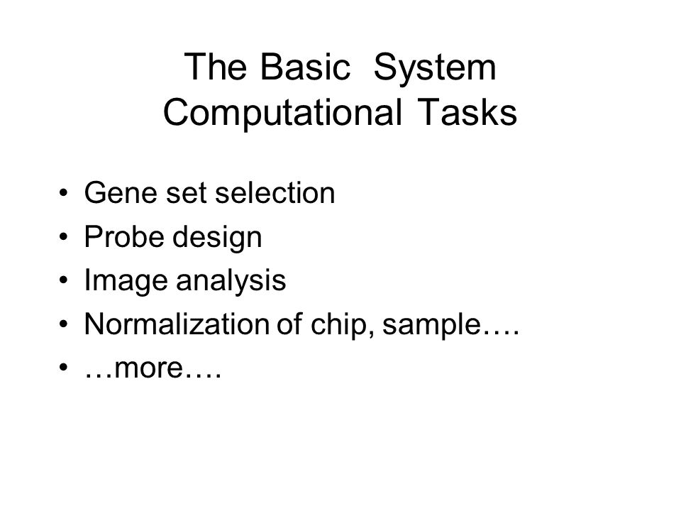 The Basic System Computational Tasks