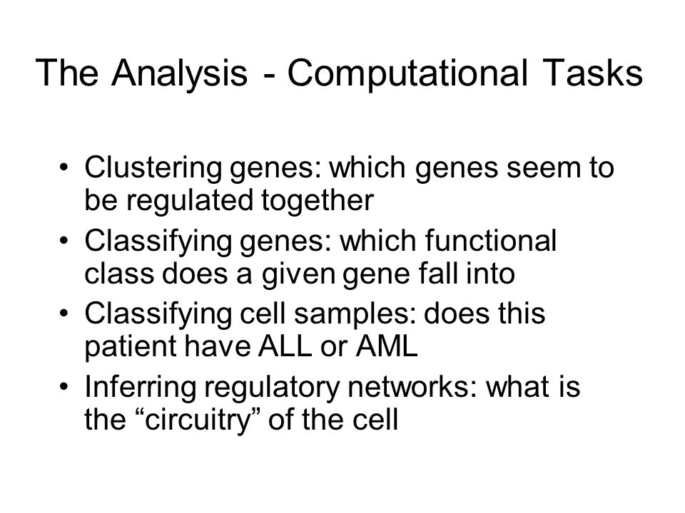 The Analysis - Computational Tasks