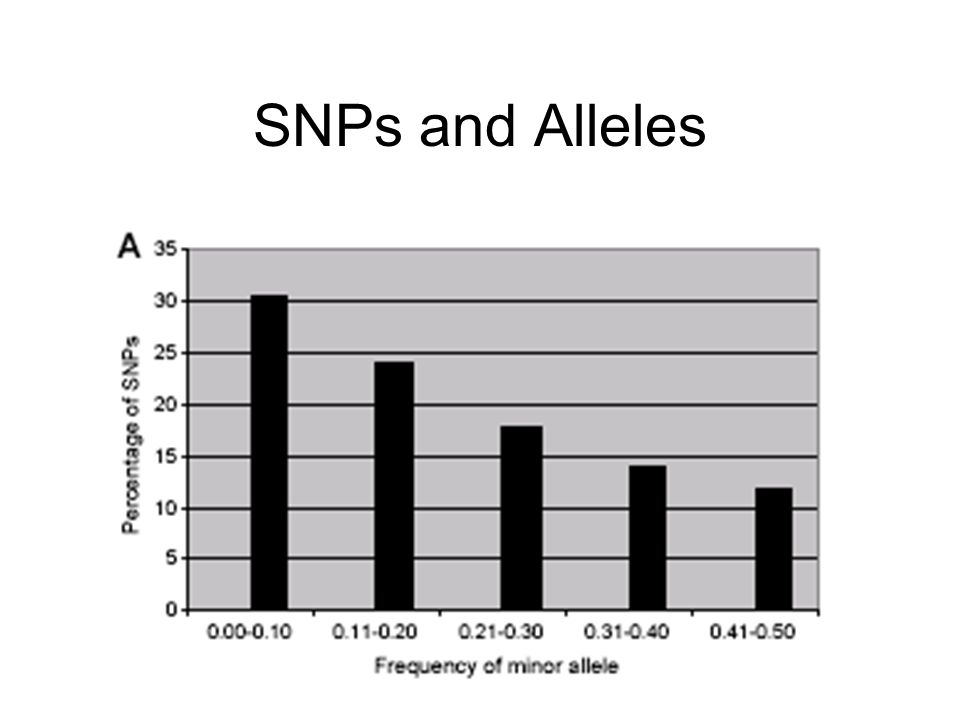 SNPs and Alleles