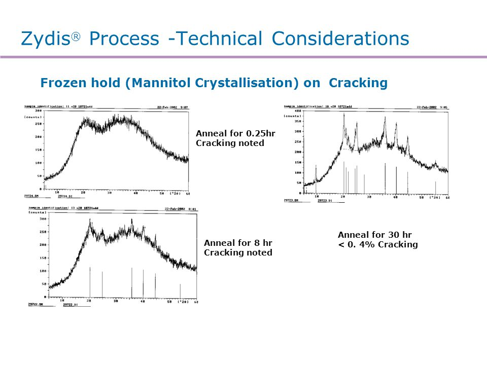 Zydis® Process -Technical Considerations