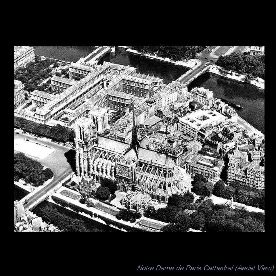 Notre Dame de Paris Cathedral (Aerial View)