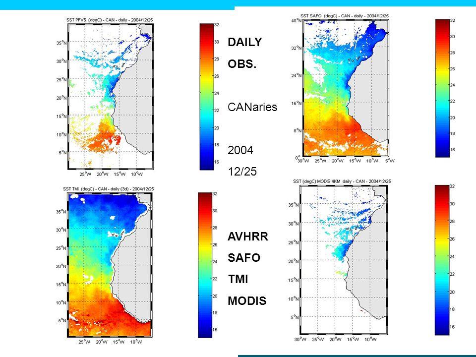 DAILY OBS. CANaries 2004 12/25 AVHRR SAFO TMI MODIS