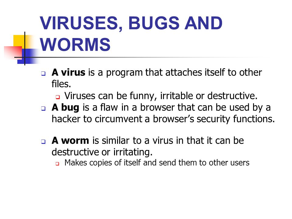 VIRUSES, BUGS AND WORMS A virus is a program that attaches itself to other files. Viruses can be funny, irritable or destructive.