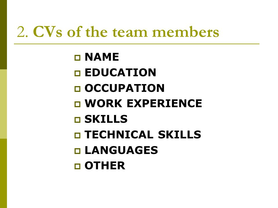2. CVs of the team members NAME EDUCATION OCCUPATION WORK EXPERIENCE