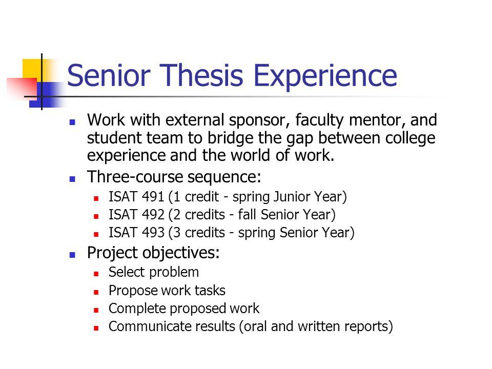 Senior Thesis Experience
