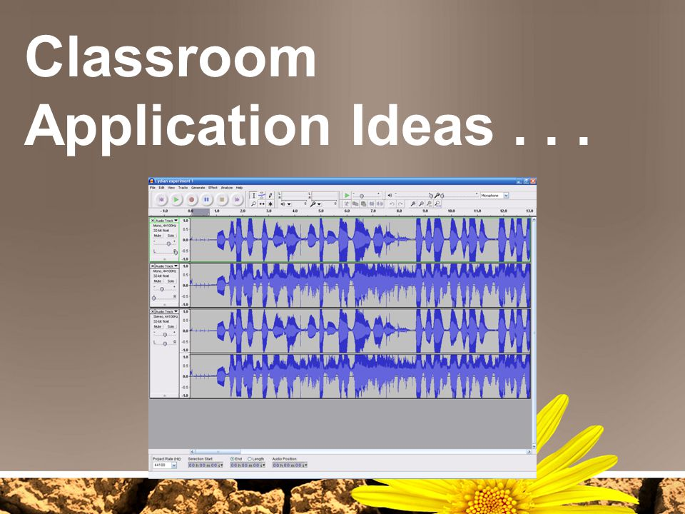 Classroom Application Ideas . . .
