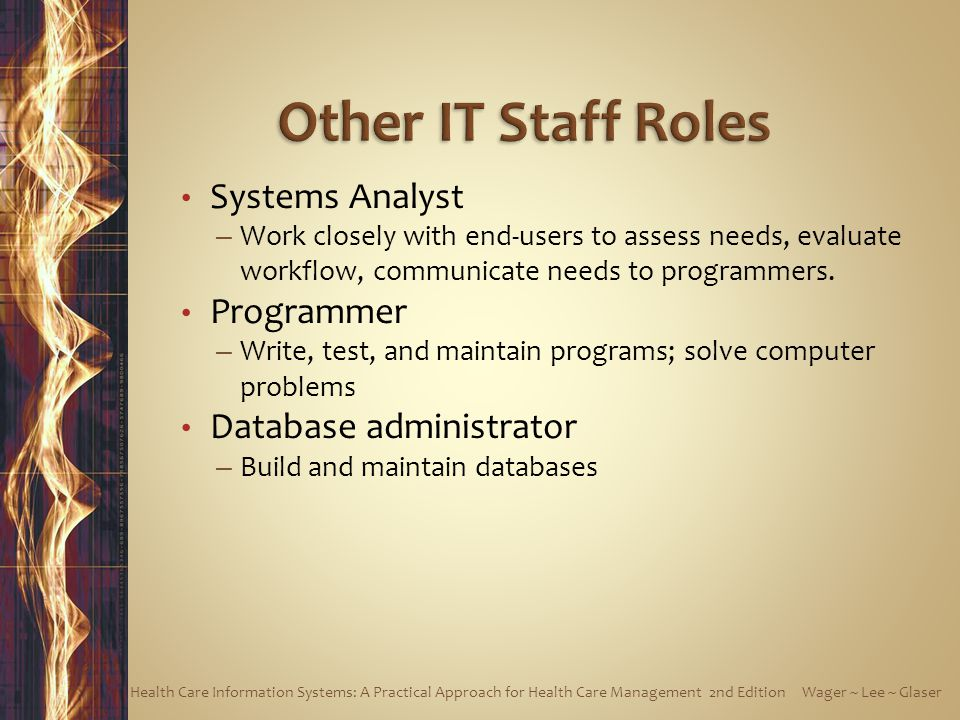 Other IT Staff Roles Systems Analyst Programmer Database administrator