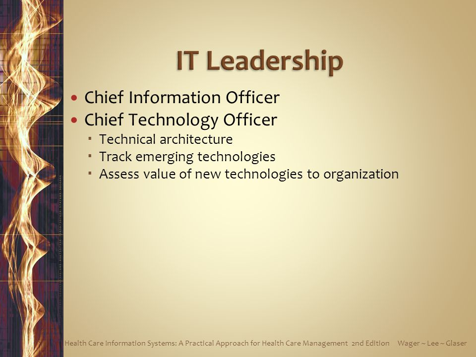IT Leadership Chief Information Officer Chief Technology Officer