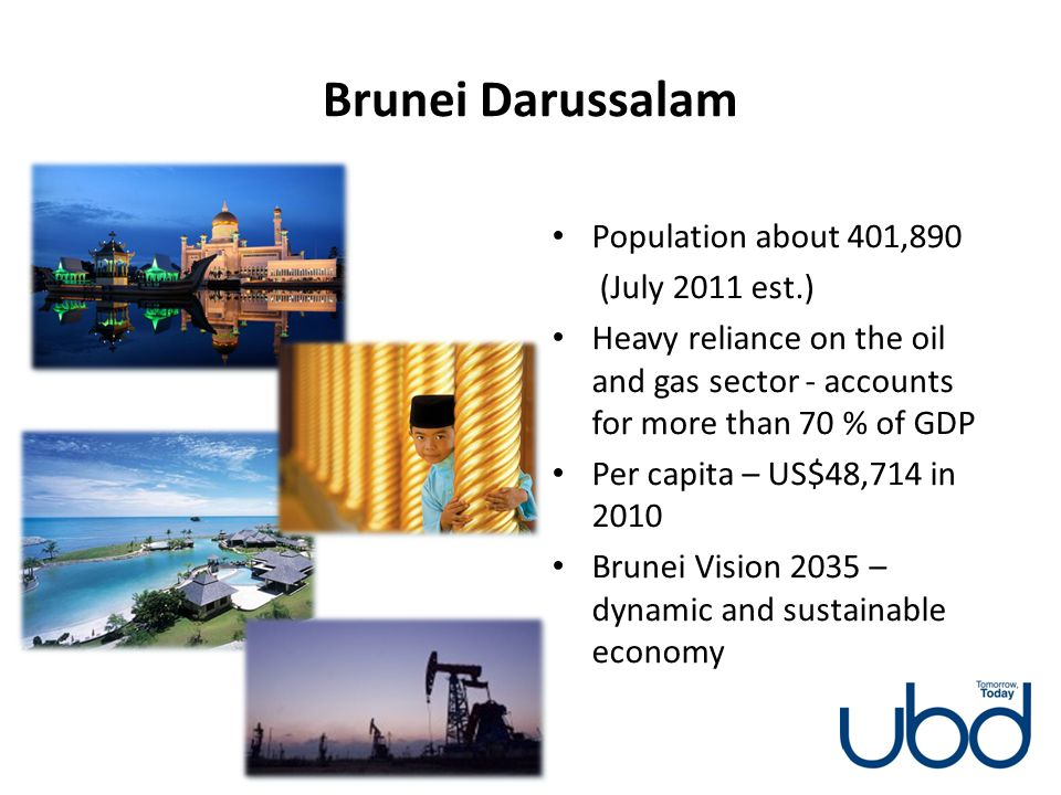 Brunei Darussalam Population about 401,890 (July 2011 est.)