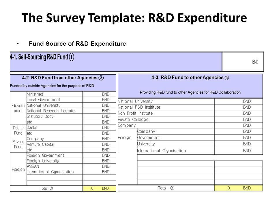 The Survey Template: R&D Expenditure