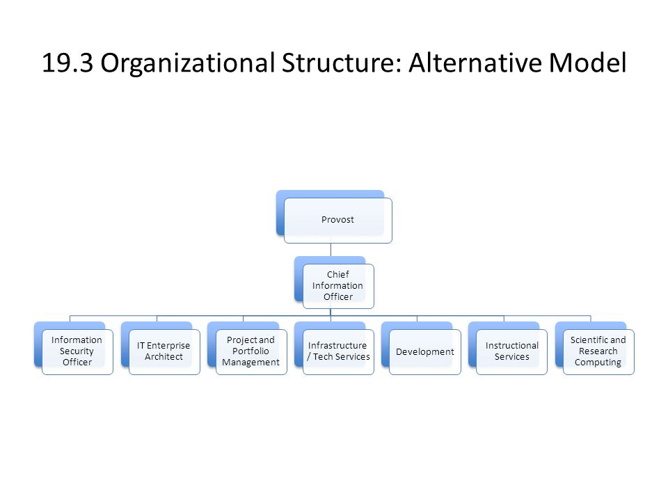 19.3 Organizational Structure: Alternative Model