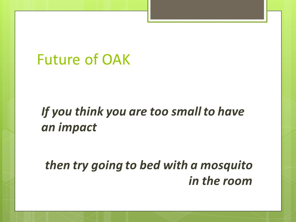 Future of OAK If you think you are too small to have an impact