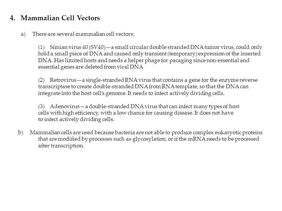 Mammalian Cell Vectors