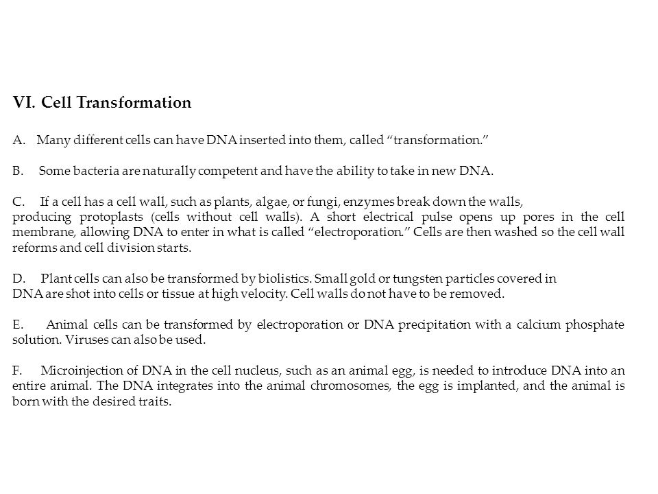 Cell Transformation Many different cells can have DNA inserted into them, called transformation.