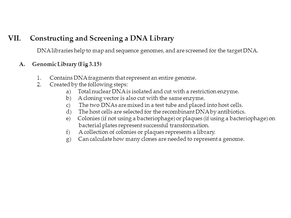 VII. Constructing and Screening a DNA Library