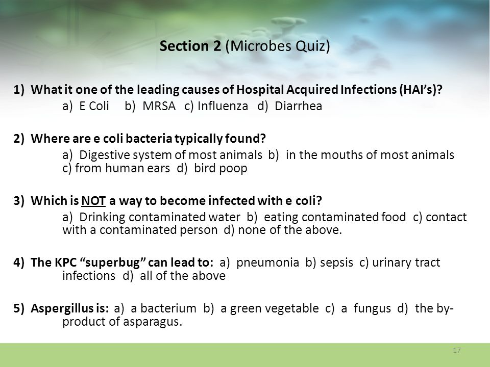 Section 2 (Microbes Quiz)