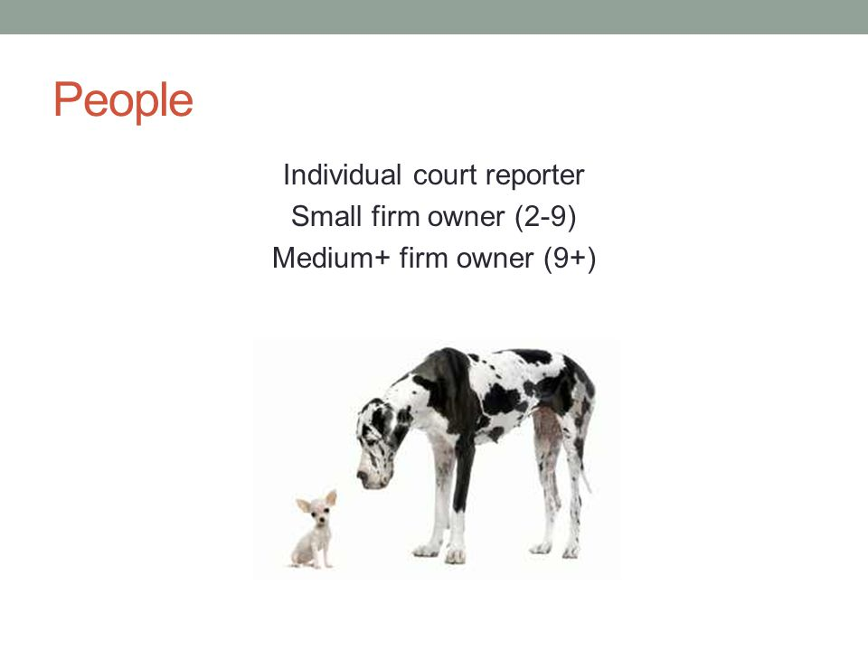 People Individual court reporter Small firm owner (2-9) Medium+ firm owner (9+)