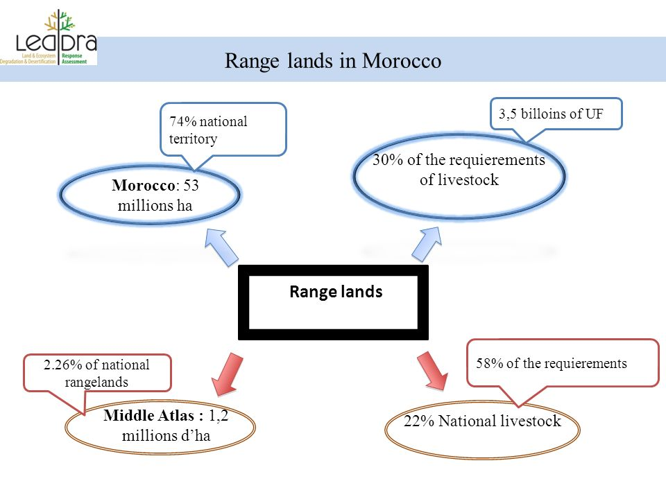 Range lands in Morocco Range lands