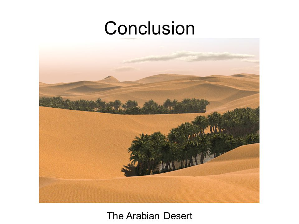 Conclusion The Arabian Desert
