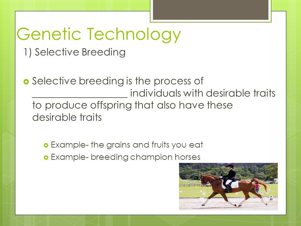 Genetic Technology 1) Selective Breeding