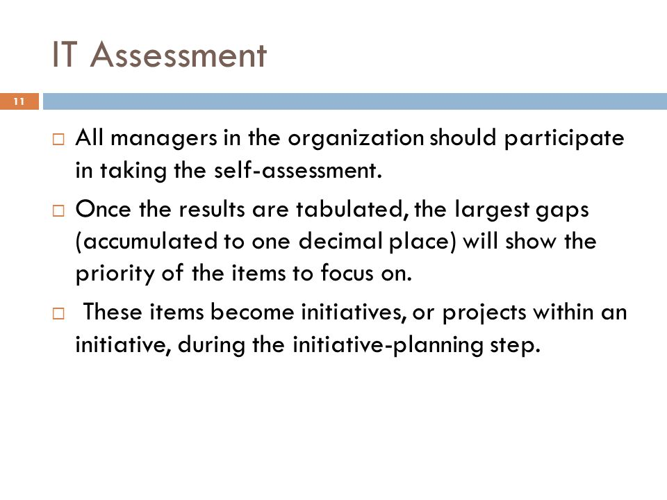 IT Assessment All managers in the organization should participate in taking the self-assessment.