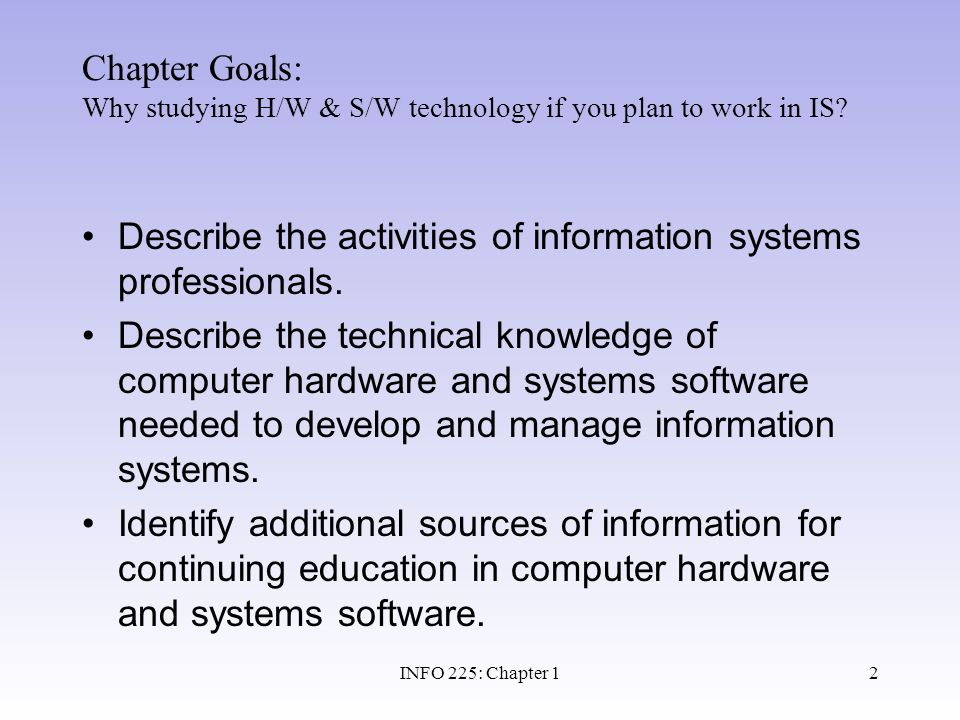 Describe the activities of information systems professionals.