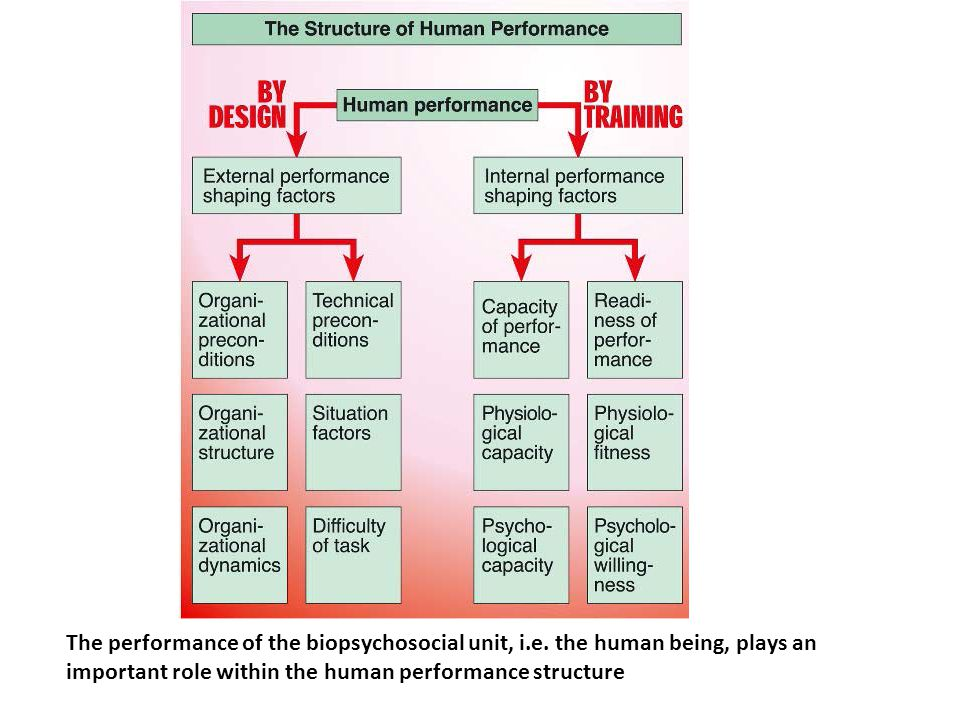 The performance of the biopsychosocial unit, i. e