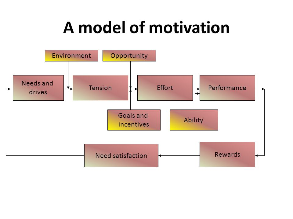 A model of motivation Environment Opportunity Needs and drives Tension