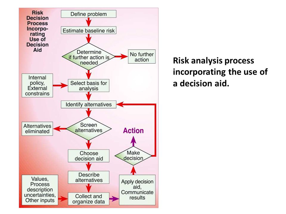 Risk analysis process incorporating the use of a decision aid.