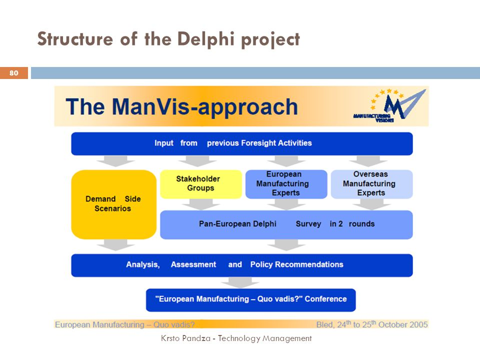 Structure of the Delphi project