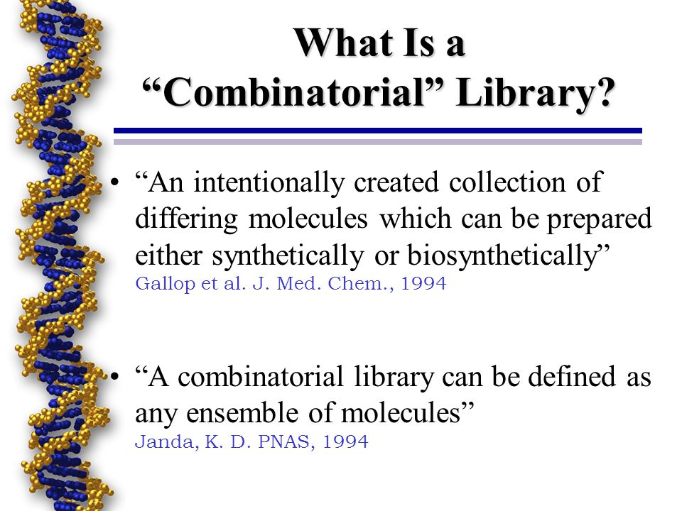 What Is a Combinatorial Library