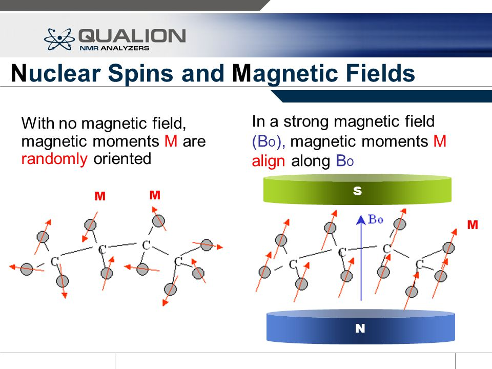 Nuclear Spins and Magnetic Fields