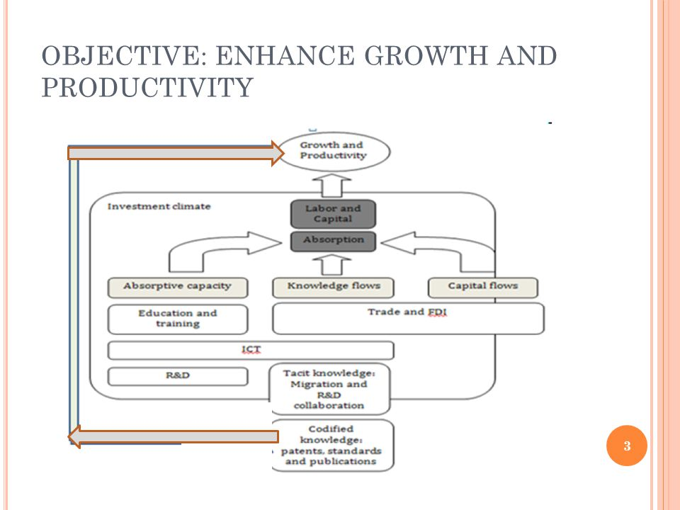 OBJECTIVE: ENHANCE GROWTH AND PRODUCTIVITY