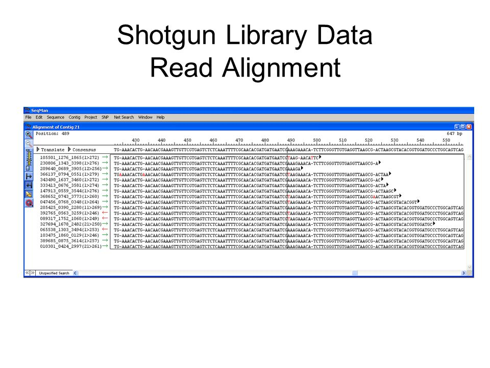 Shotgun Library Data Read Alignment