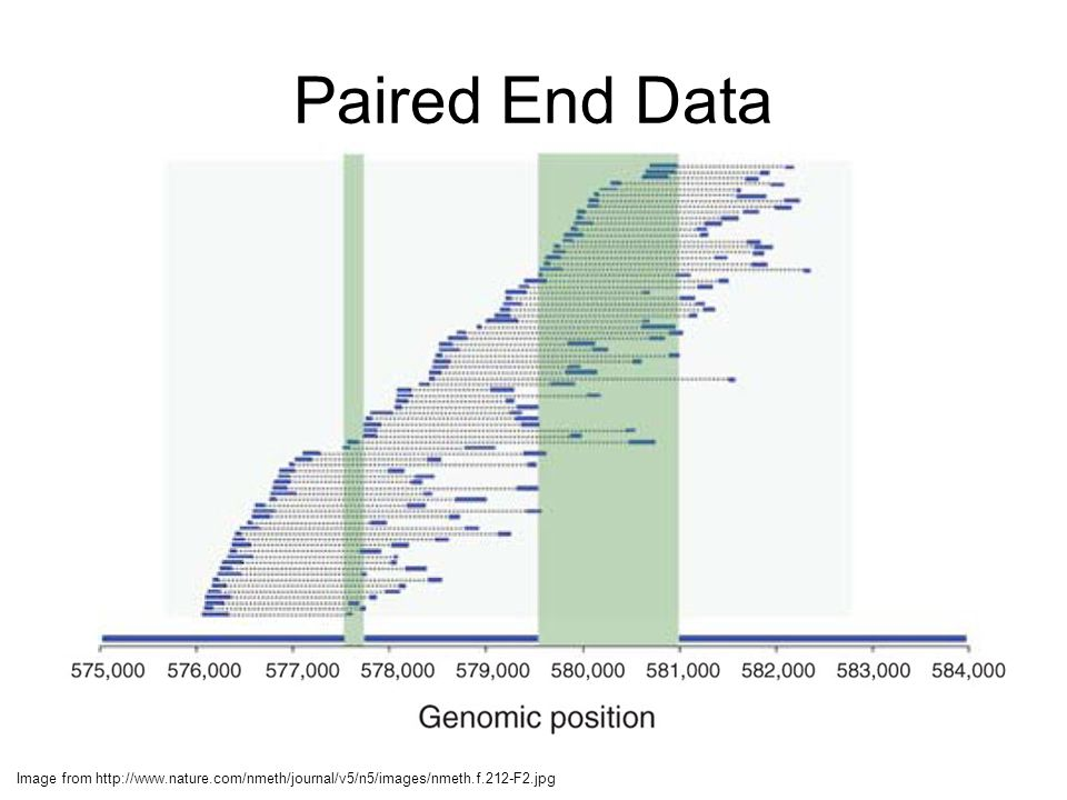 Paired End Data Image from http://www.nature.com/nmeth/journal/v5/n5/images/nmeth.f.212-F2.jpg