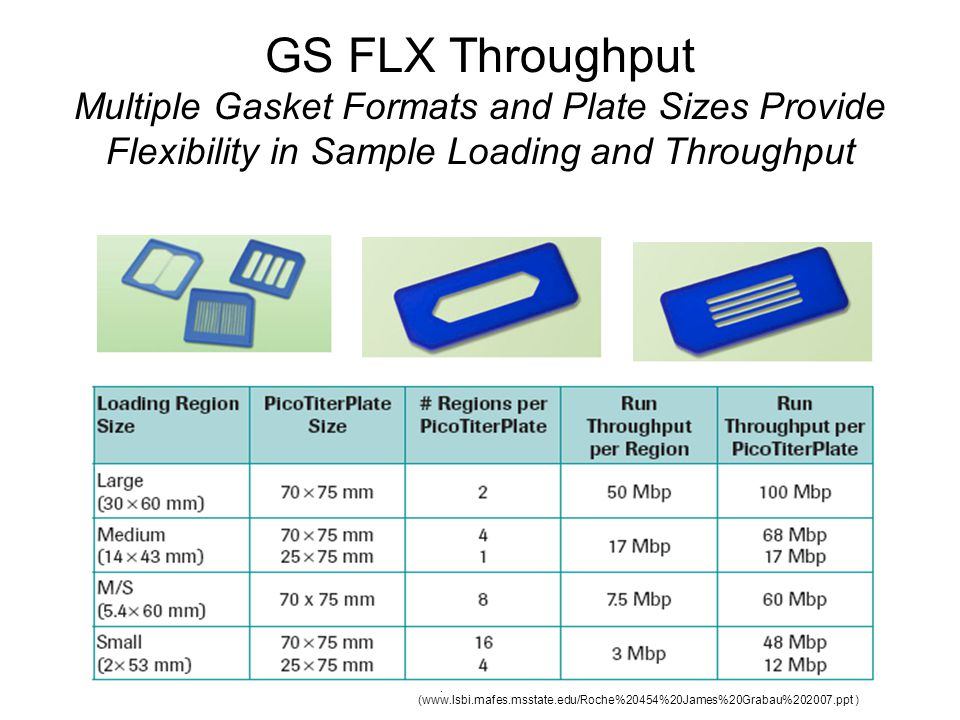 GS FLX Throughput Multiple Gasket Formats and Plate Sizes Provide Flexibility in Sample Loading and Throughput