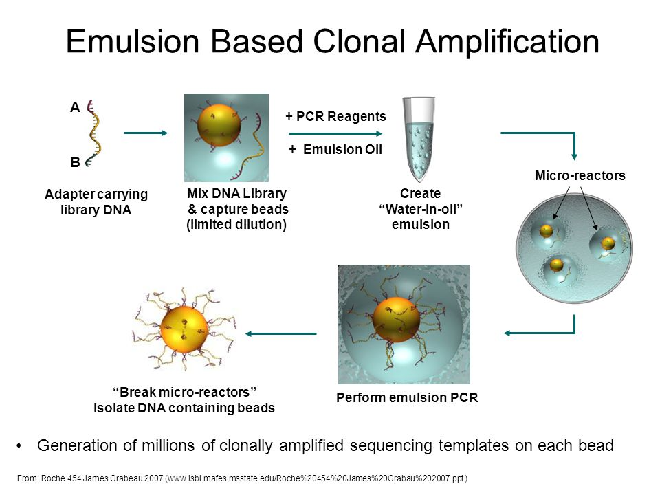 Emulsion Based Clonal Amplification