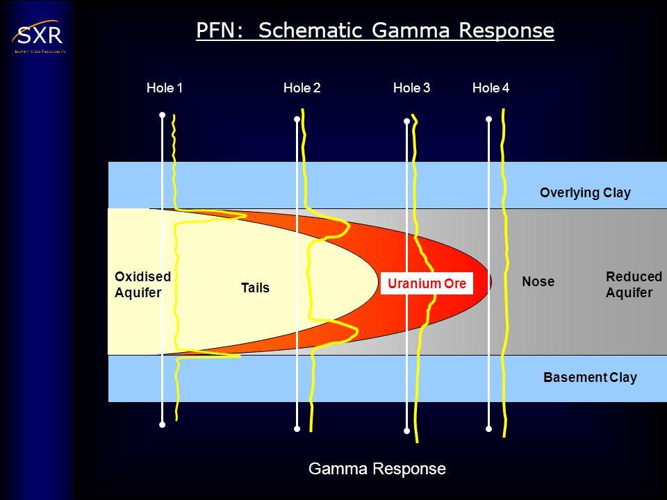PFN: Schematic Gamma Response