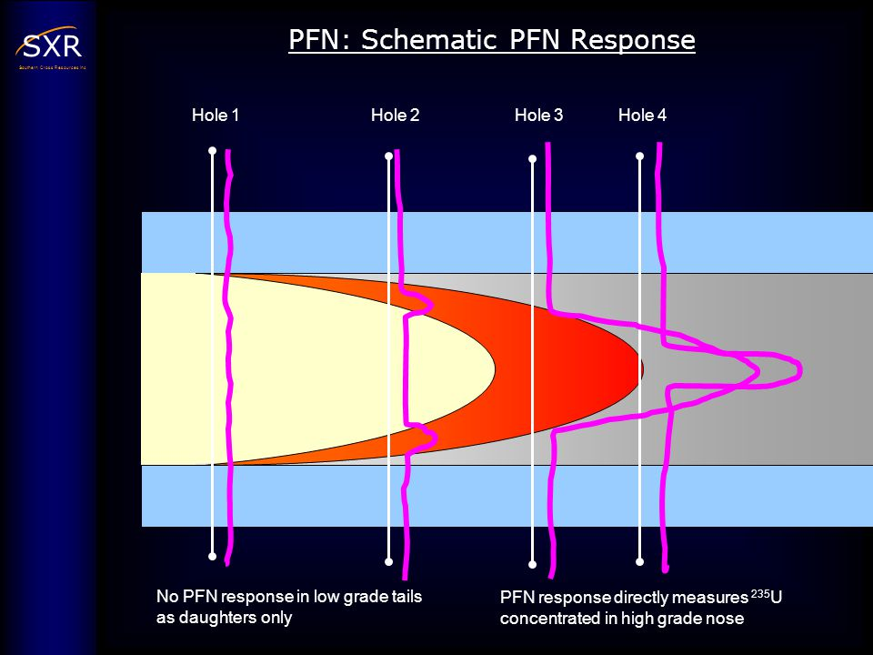 PFN: Schematic PFN Response