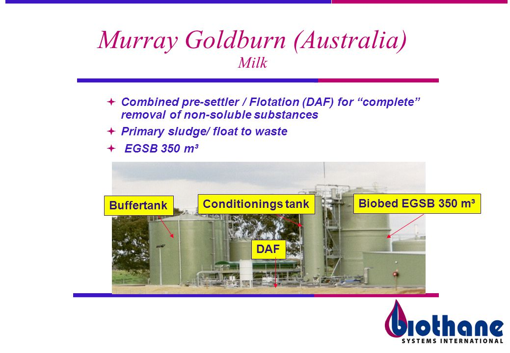 Murray Goldburn (Australia) Milk
