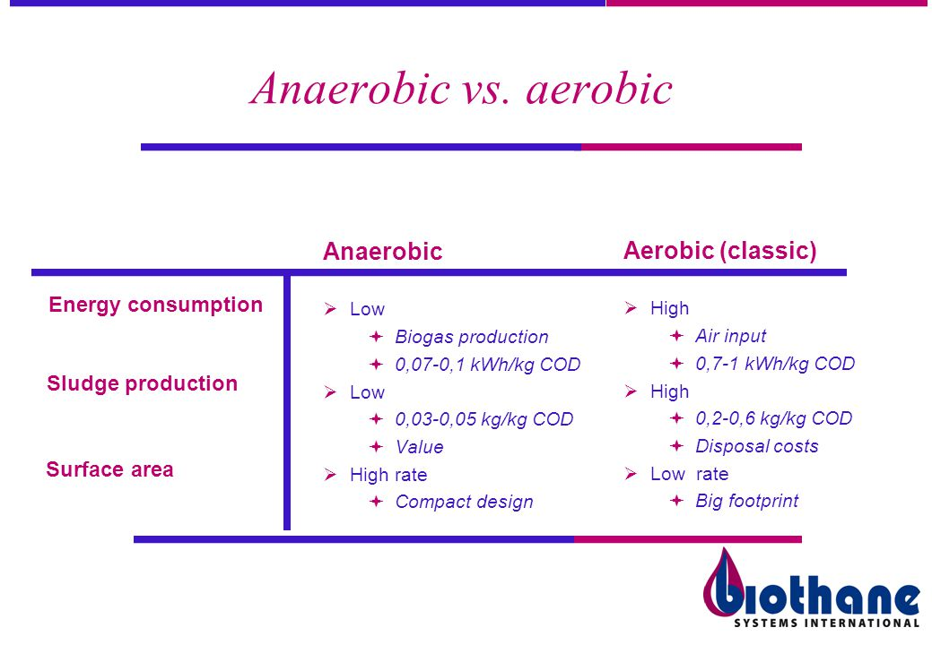 Anaerobic vs. aerobic Anaerobic Aerobic (classic) Energy consumption
