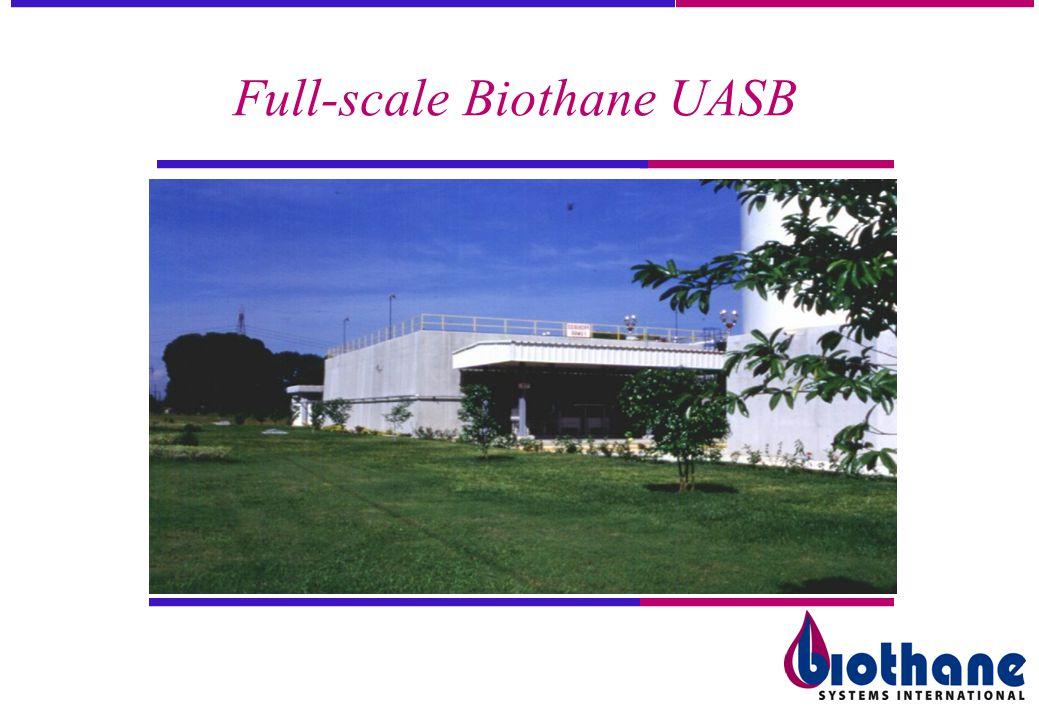 Full-scale Biothane UASB