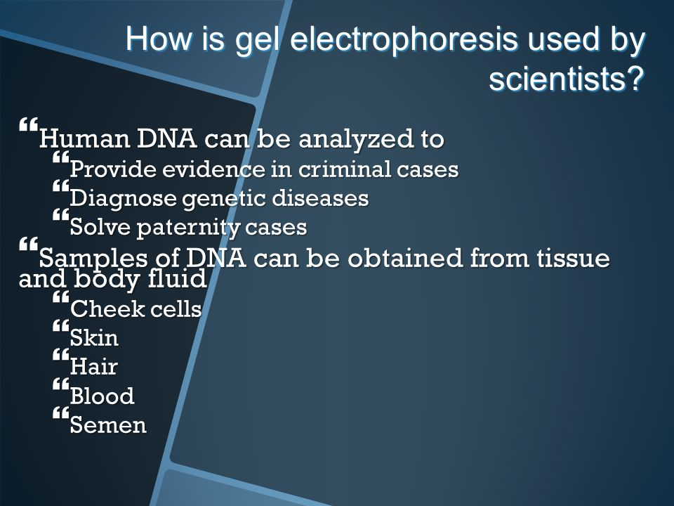 How is gel electrophoresis used by scientists